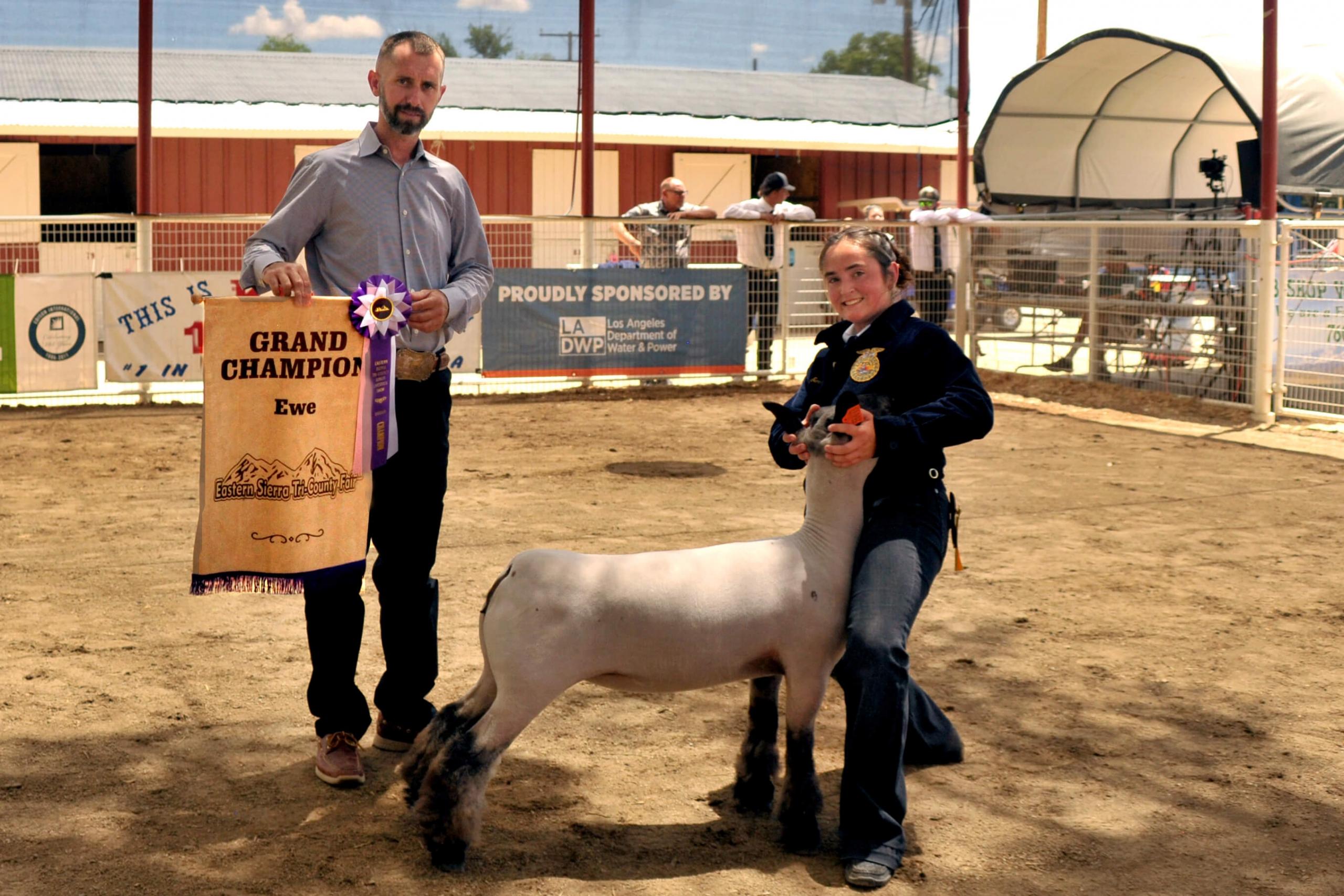 Amai Sarratea - Champion Ewe