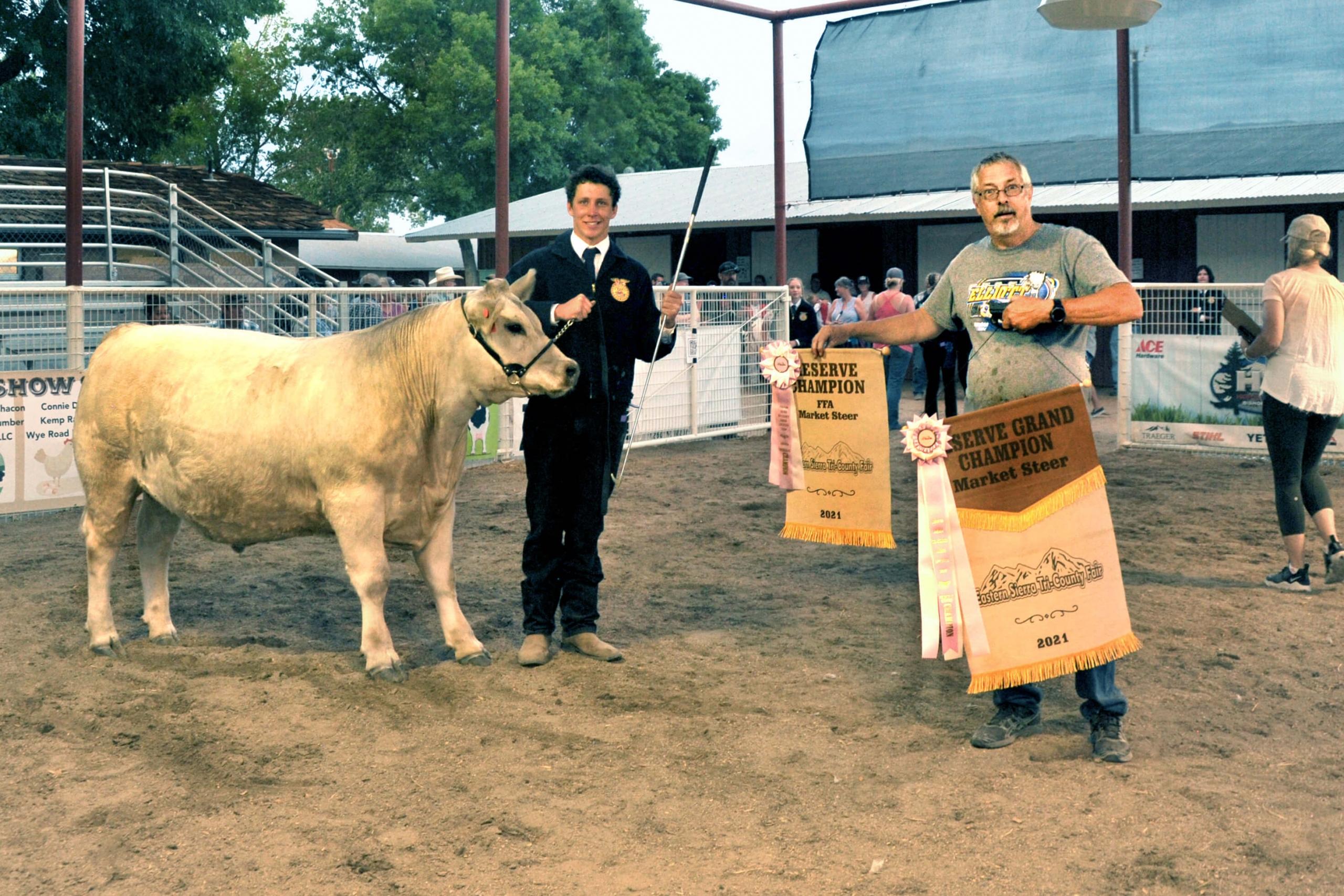 Conner Holland - Reserve Champ Steer