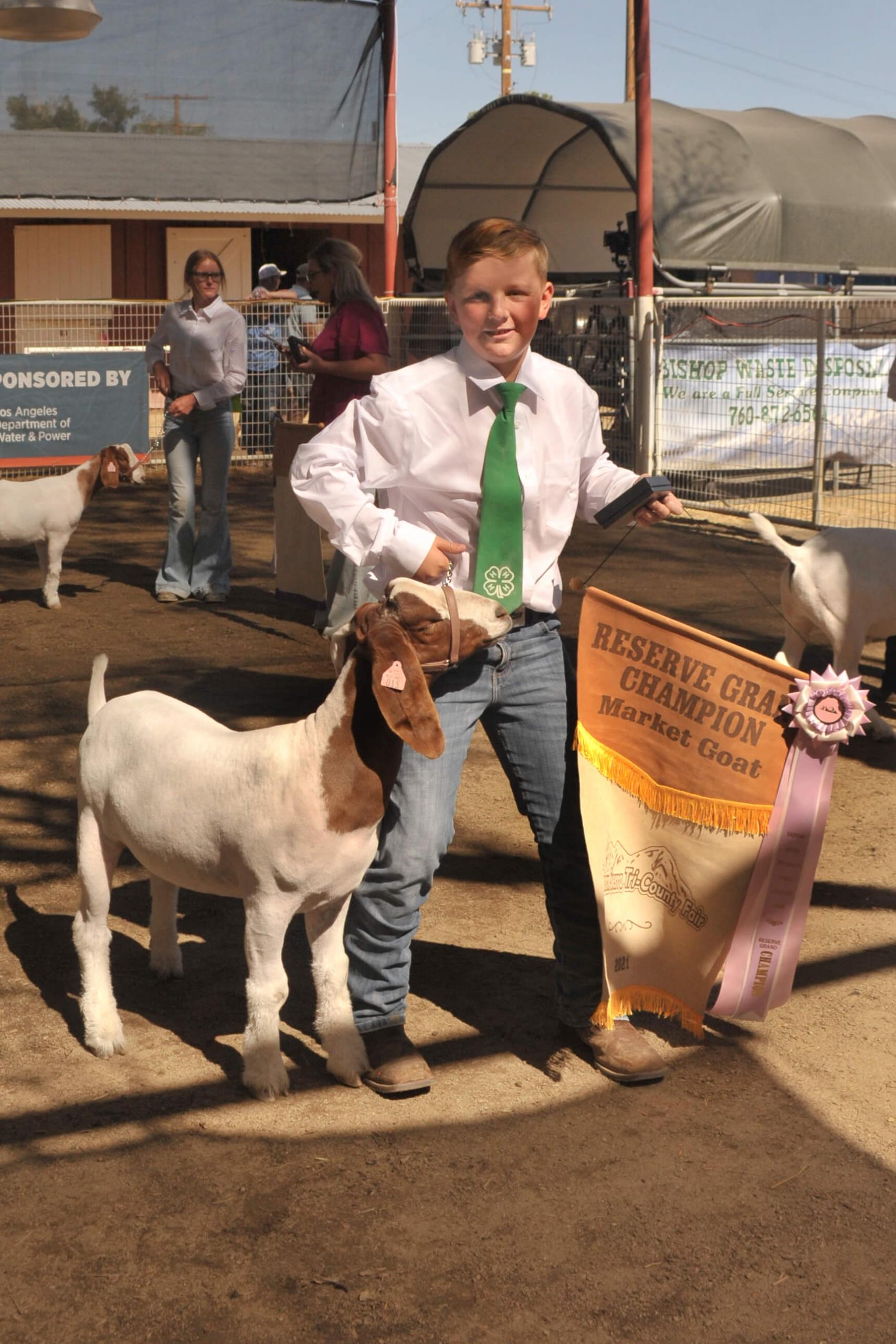 Junior Livestock Goat