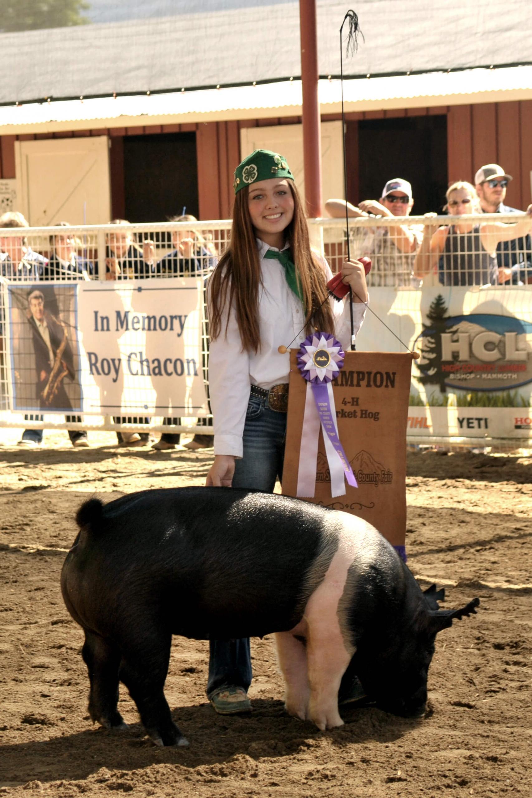 Gillian Urton - Reserve Champ Hog